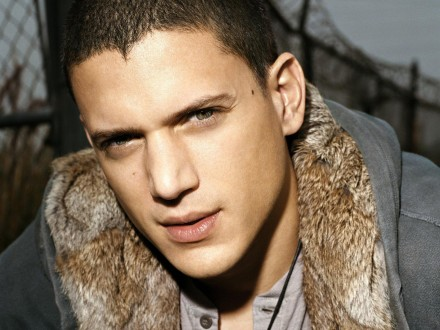 Wentworth Miller comes out of the closet!
